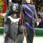 Костюмы для цирка