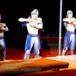 Шоу, театр, эстрада, цирк